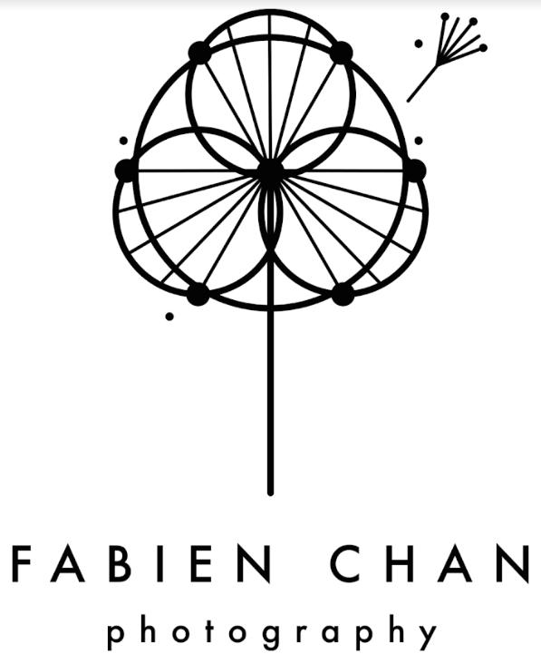 FabienChanLogo